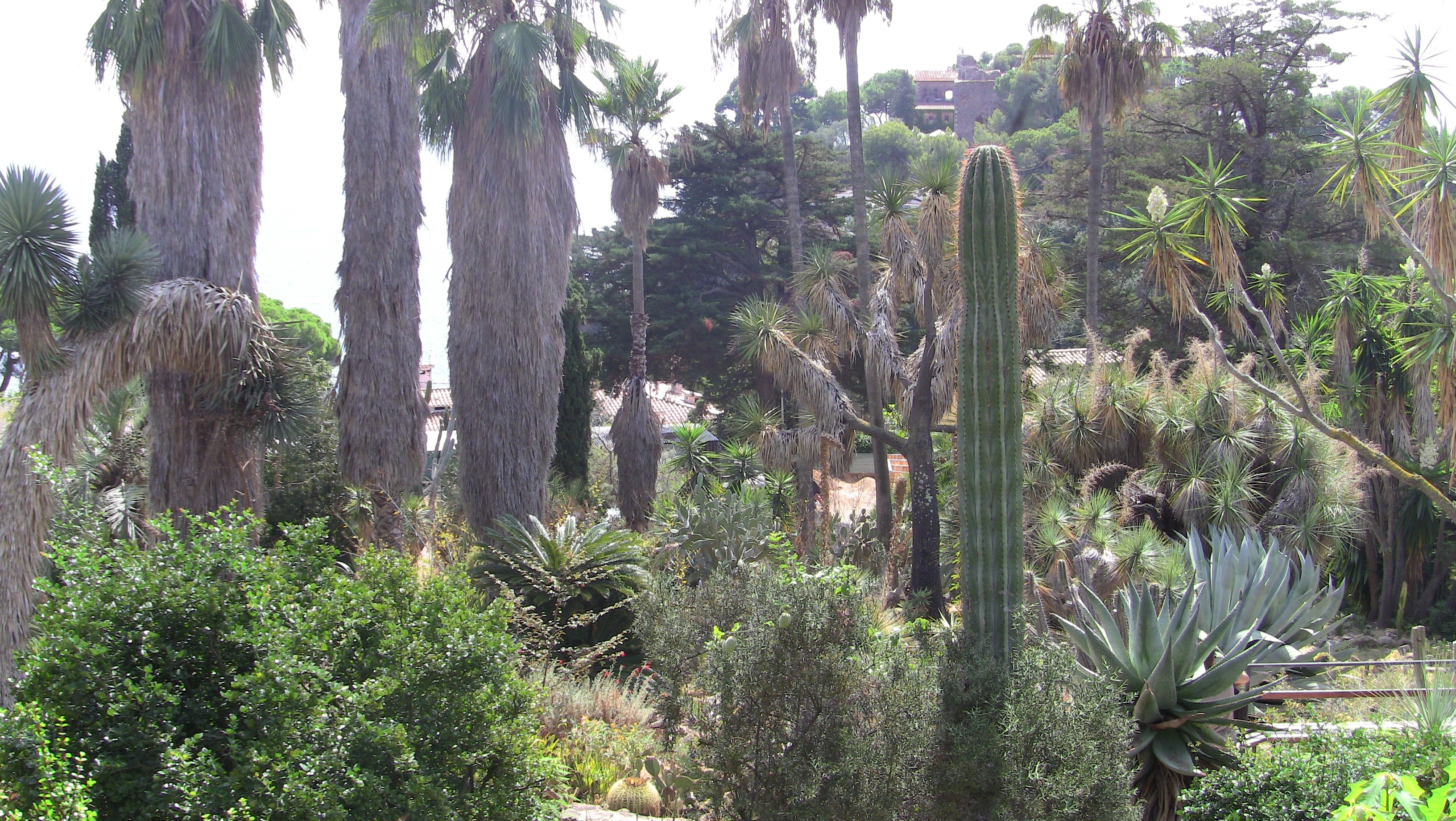 Botanic Garden in The Spanish City of Blanes