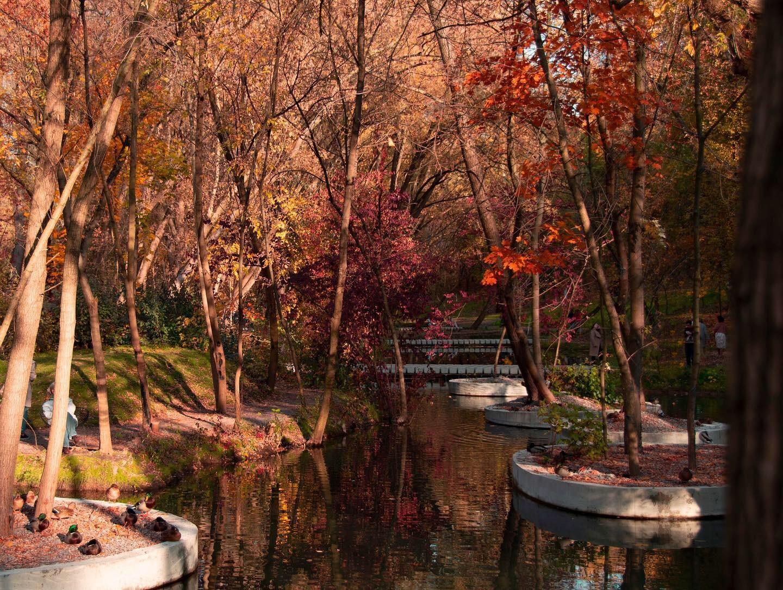 Ukraine park